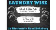 Laundry Wise Logo